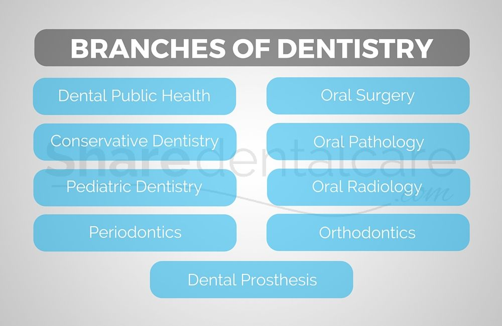 Branches of Dentistry | Dental Specialties