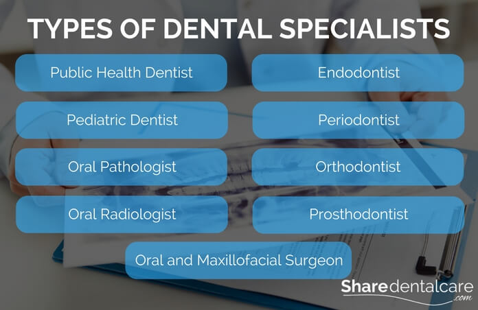Dentist |Types of Dental Specialists