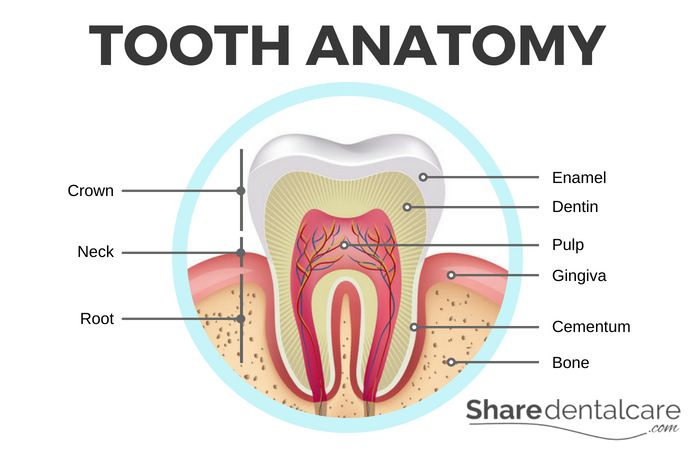 How sensitive teeth can occur
